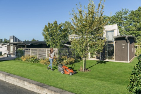 How to choose the best lawn mower for your yard
